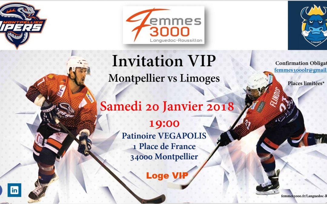 Hockey sur glace à la patinoire VEGAPOLIS de Montpellier