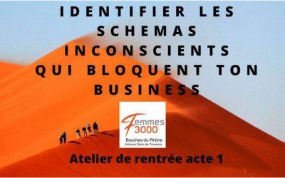 Conférence Interactive- Développer son business Acte 1, le 12 octobre avec Antenne Salon de Provence