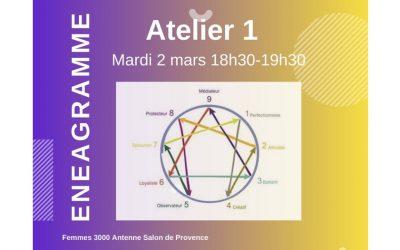Webinaire : Enéagramme Atelier 1 – Profils de personnalité le 2 mars avec Femmes 3000 antenne Salon de Provence