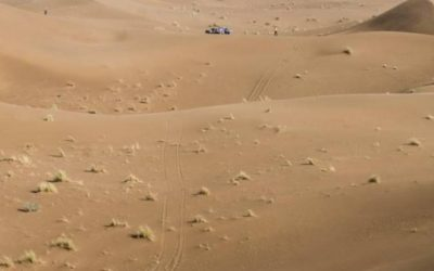 L'incomparable rallye Aïcha des Gazelles du Maroc